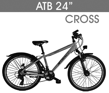 ATB 24 CROSS grau